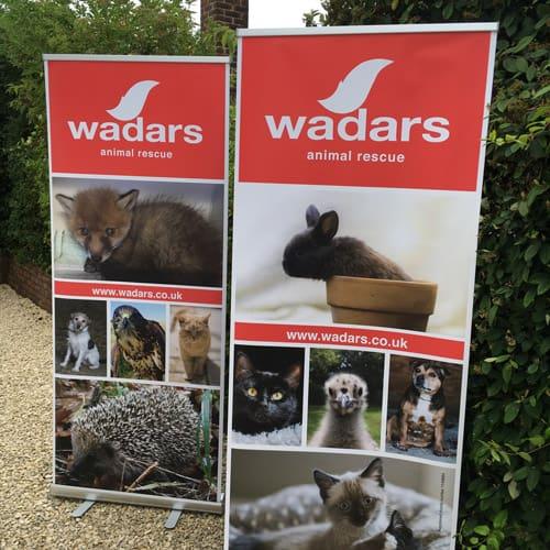 Wadars Roller Banners